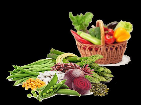 Le Verdure e gli Antipasti