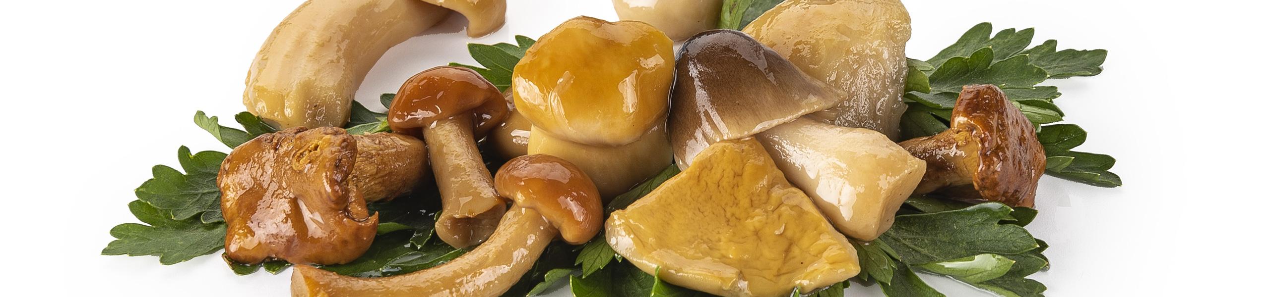 Antipasto Fantasia funghi misti in olio