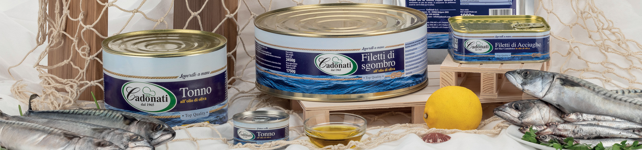 Filetti di sgombro all'olio d'oliva